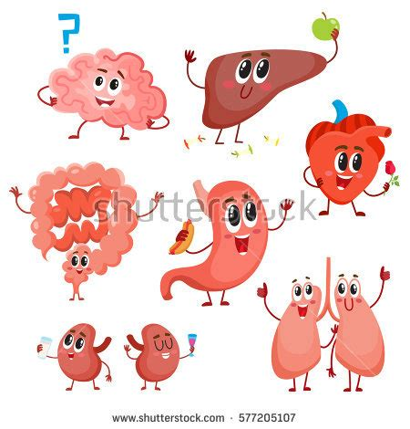 Essay about heart transplant